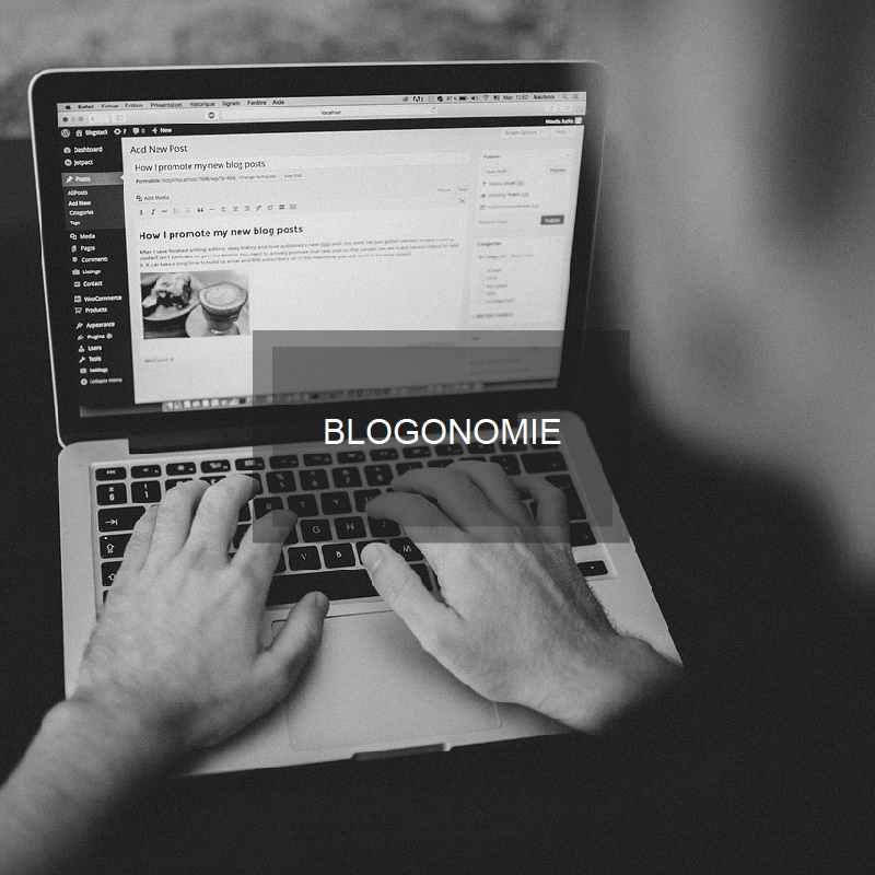 Blogonomie